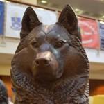 日本の犬のしつけはピンキリ