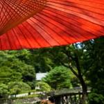 海外に行って初めて分かった日本の素晴らしさ!