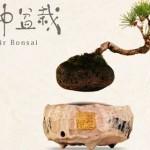 """空中盆栽""""AIR BONSAI""""~宙を浮いて回る盆栽が凄すぎる!"""